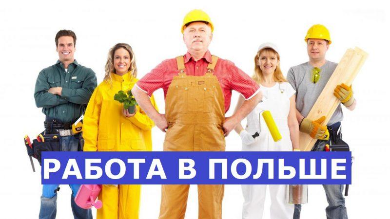 Работа в польше для граждан россии сколько стоят квартиры в оаэ